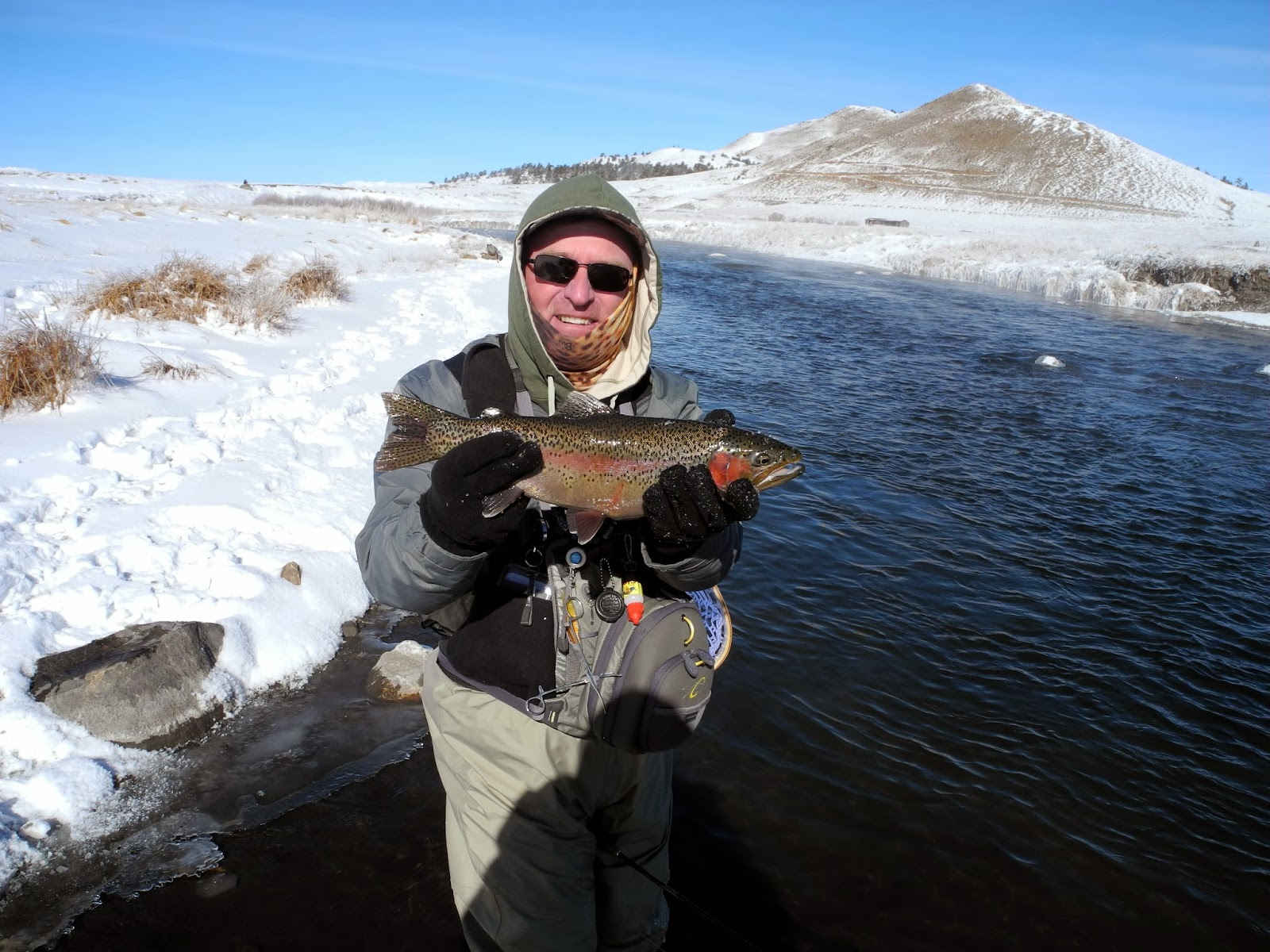 Cp 39 s fly fishing and fly tying trip report dream stream 3 for Dream stream fishing report
