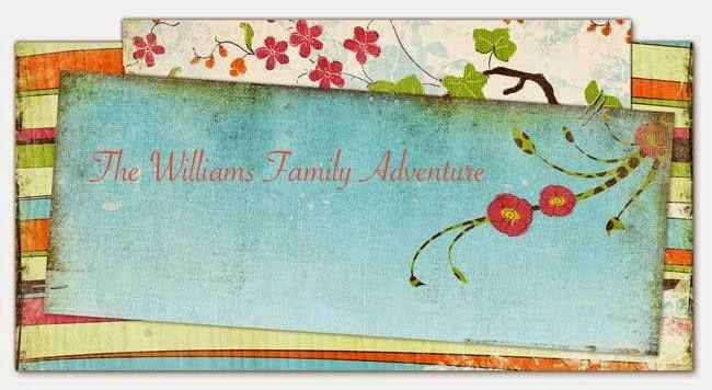 The Williams Family Adventure