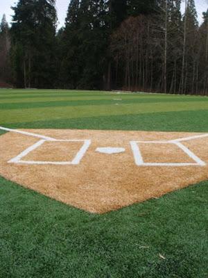 Lineas del receptor de beisbol
