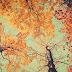 Sonzinho de segunda: Outono ♥