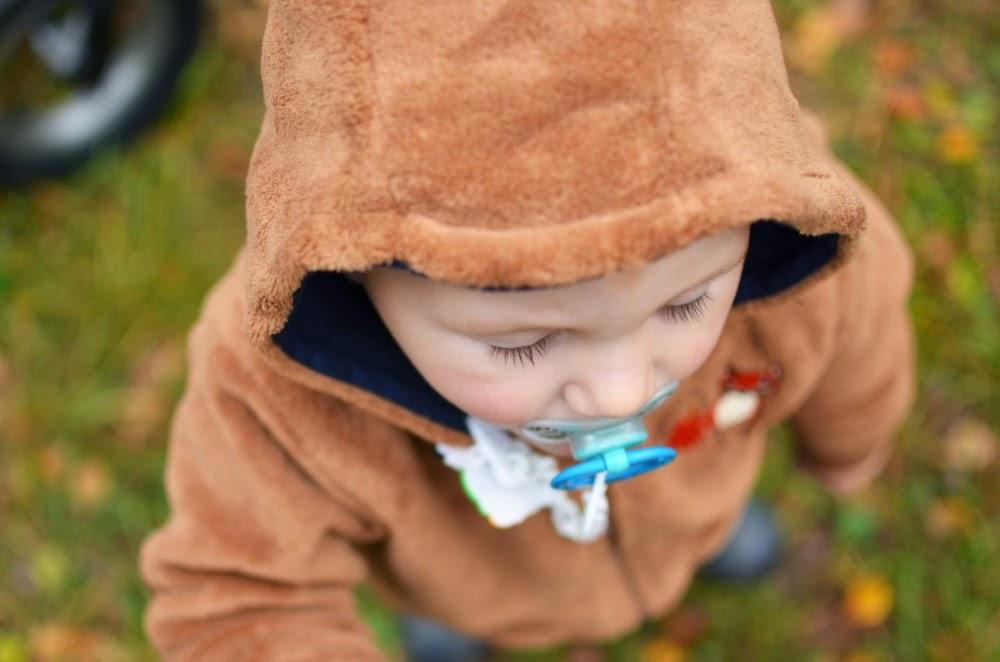 fotografia dziecięca, grzyby, grzybobranie