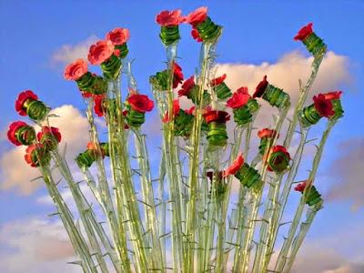 Hoa Handmade Từ Nhựa 2
