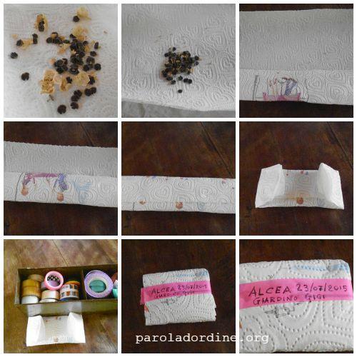 paroladordine-lastanzaverdedicri-conservare-semi-alcea