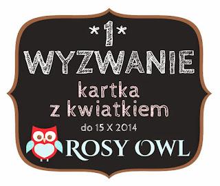 http://rosyowl.blogspot.ie/2014/09/wyzwanie-1.html