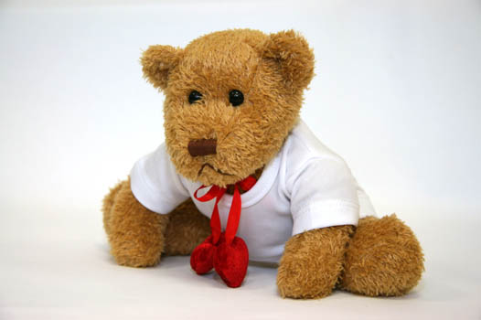 Hocki klocki teddy bear teddy bear touch the ground teddy bear teddy bear turn around teddy bear teddy bear show your shoe teddy bear teddy bear that will do altavistaventures Gallery