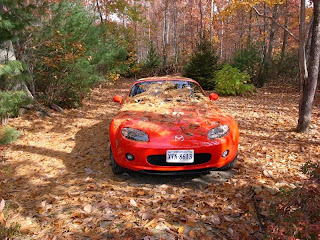My Miata, camouflaged and hiding in the woods