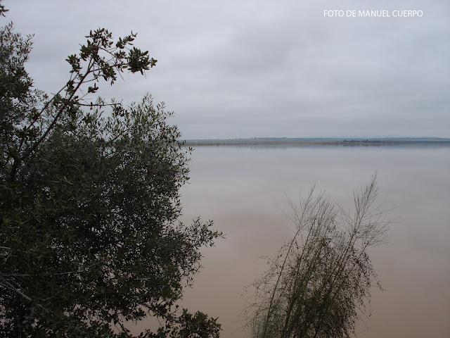 Manuel cuerpo rocha presa o embalse de los canchales flora for Lagunas artificiales construccion