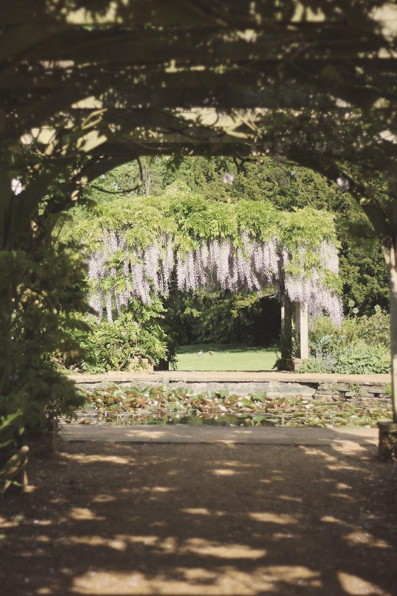 hylands park chelmsford
