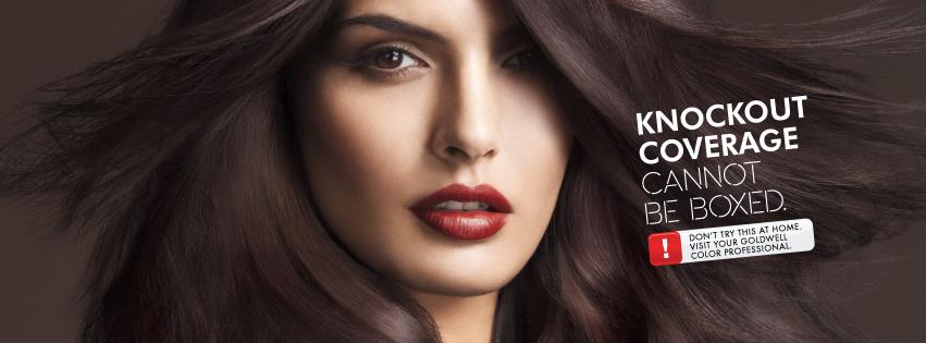 Mobile Wedding Hair And Airbrush Makeup Las Vegas: DIY Hair Color vs ...