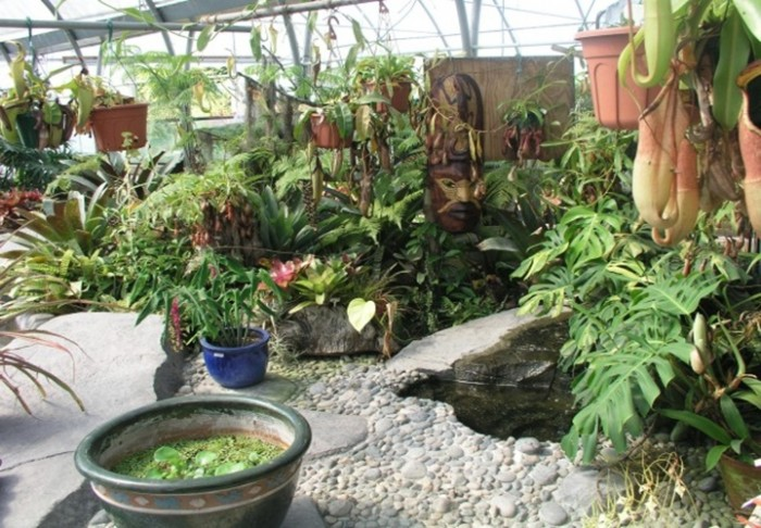 Hawaiian Backyard Landscaping Ideas : Backyard Idea Tropical Garden Design