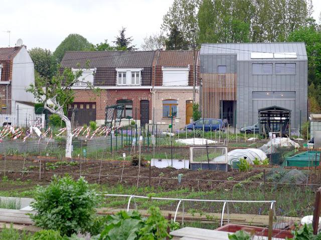 maison et atelier photo-ossature bois-architecte-labokub-architecture ecologique lille-01