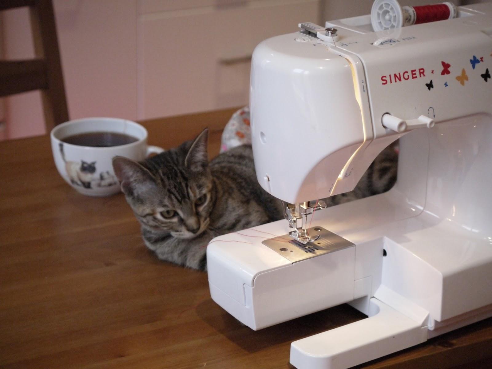 chat machine à coudre