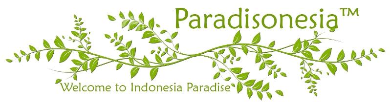 Paradisonesia