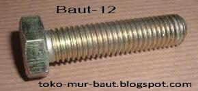 BAUT 12
