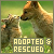 I like adopted and rescued animals
