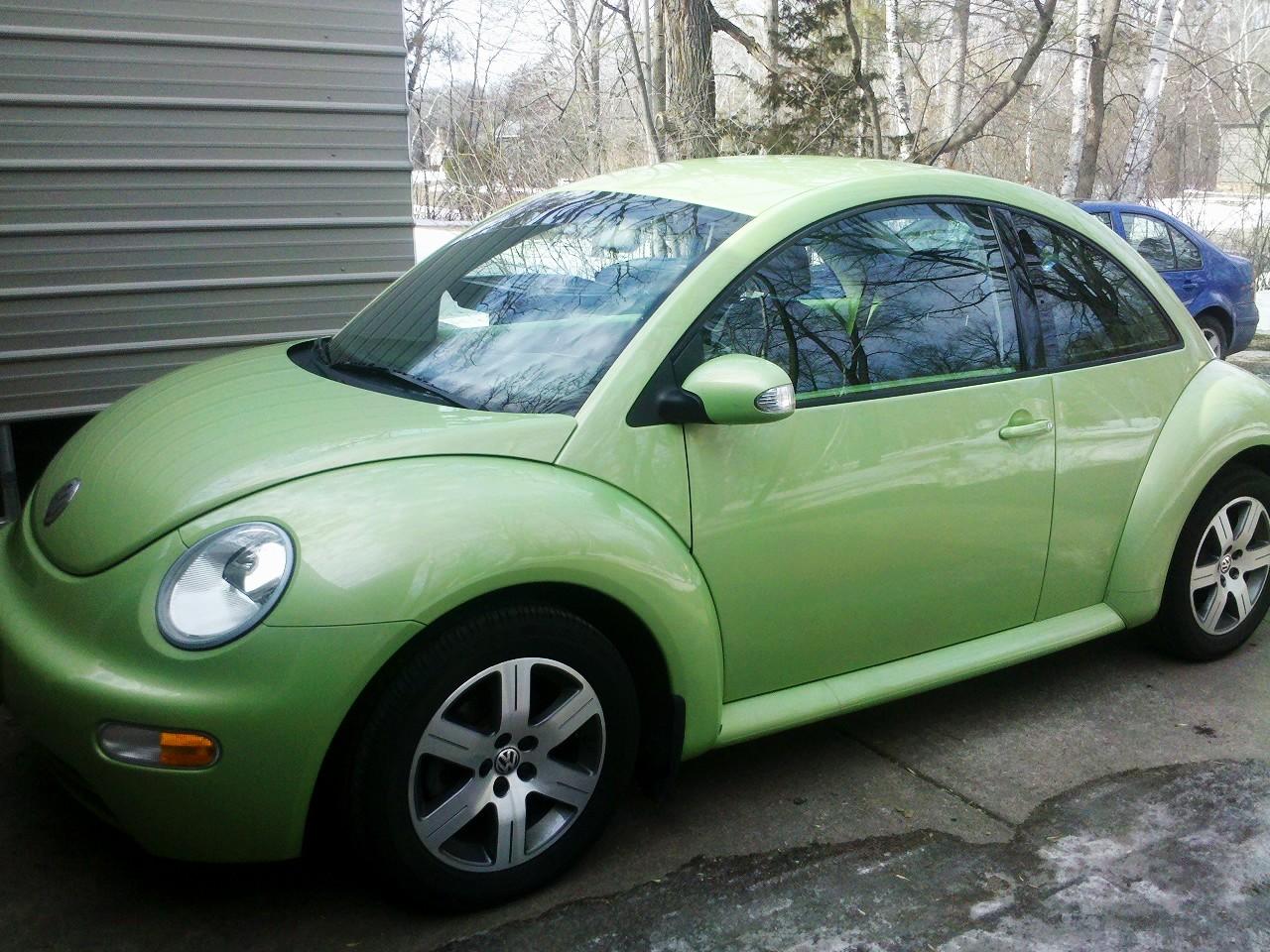 1000  images about Slugbug on Pinterest | Slug, Beetle and Gene ...