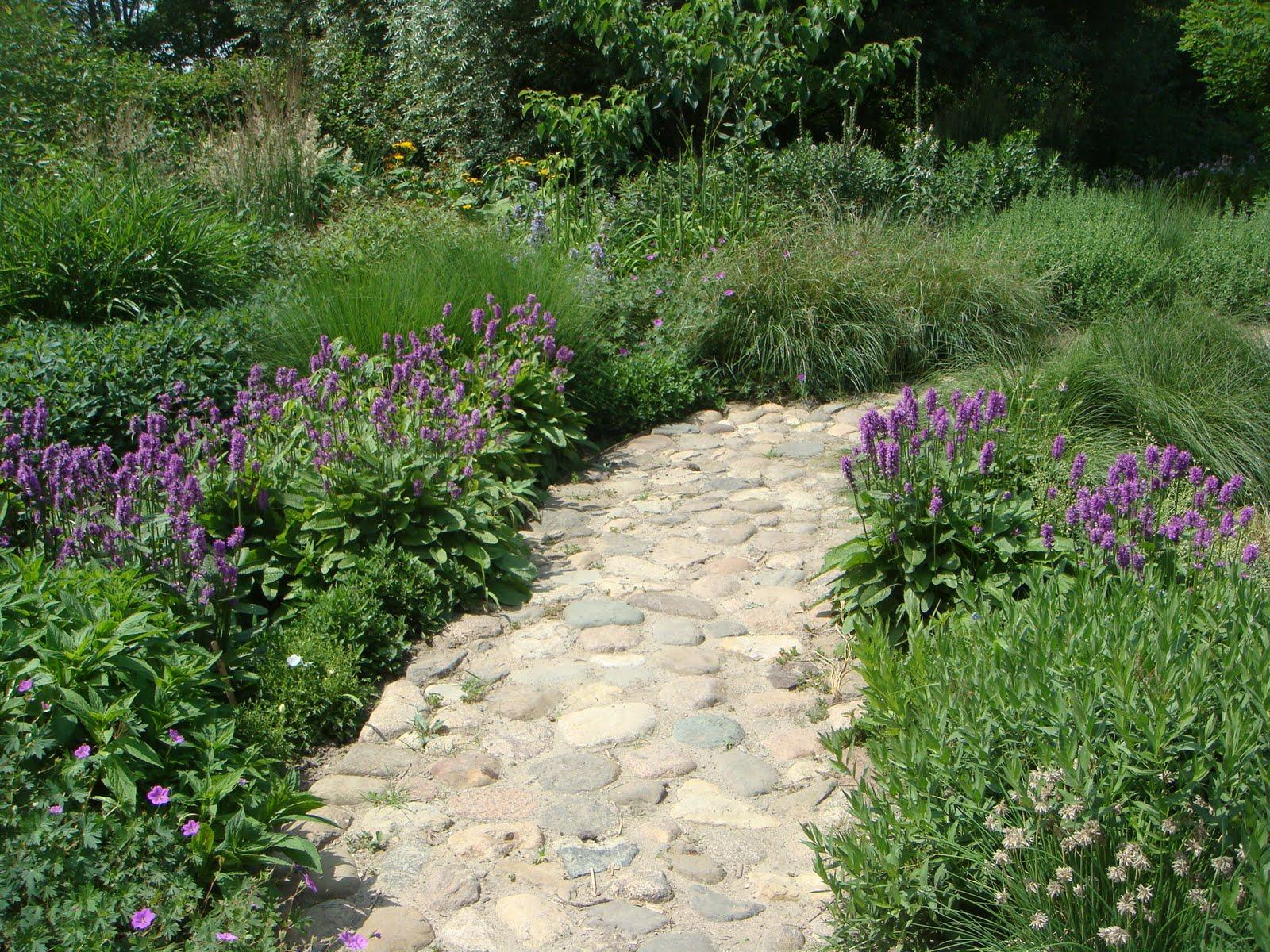 Fearless Gardening Building A Beautiful Low Maintenance Garden