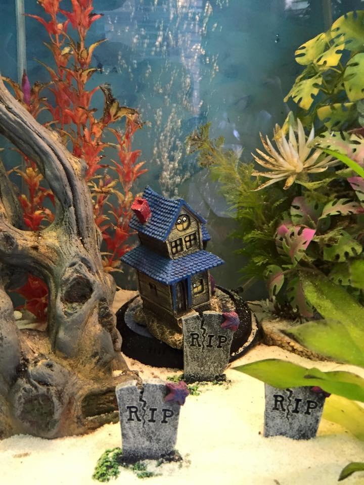 Aquarium Party Decorations