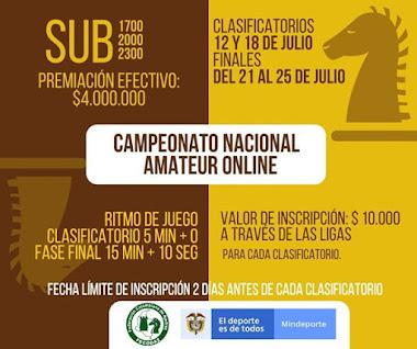 Campeonato Nacional Amateur Online 2020 (Dar clic a la imagen)