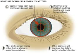 IRIS Scan On Work