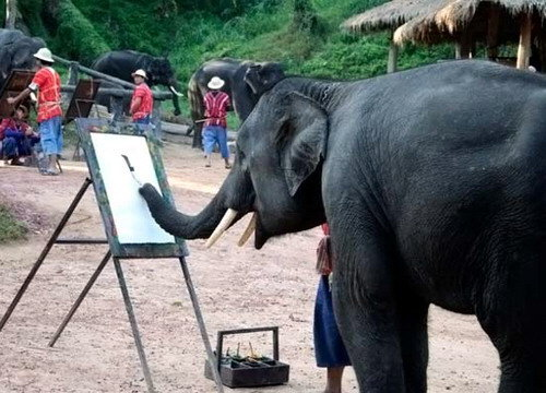 O elefante pintor