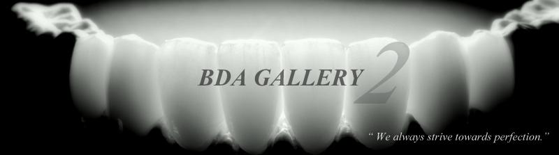 BDA GALLERY 2
