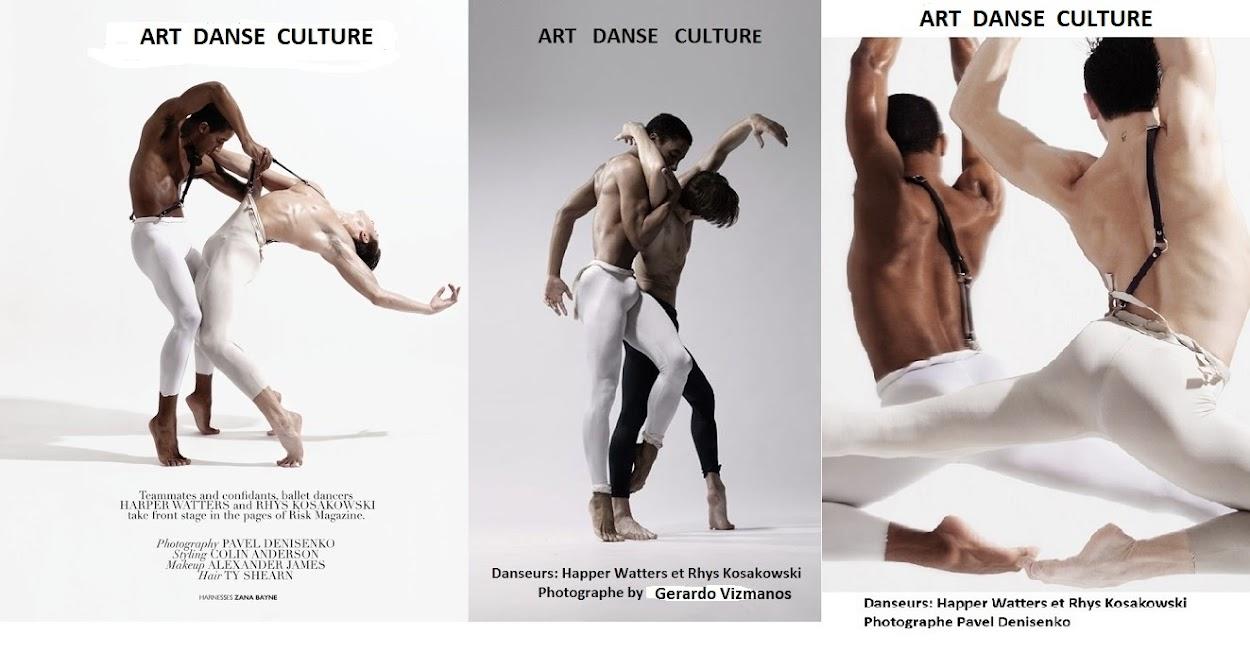 ART DANSE CULTURE