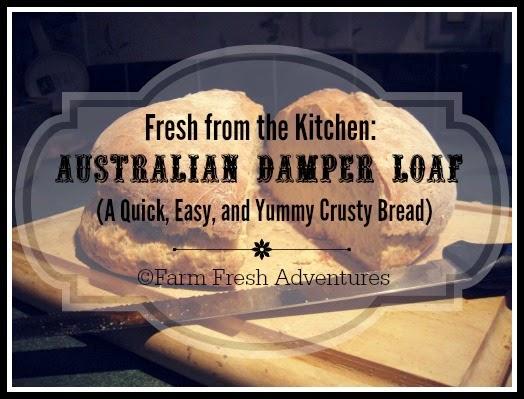 Australian Damper Loaf Recipe
