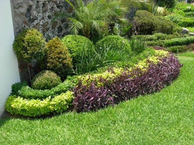 Jardiner a mundo verde octubre 2012 for Canteros de jardin