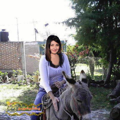 Gul Panra Above Sitting to Donkey