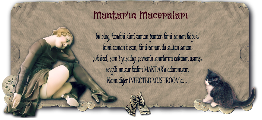 Mantar'ın Maceraları