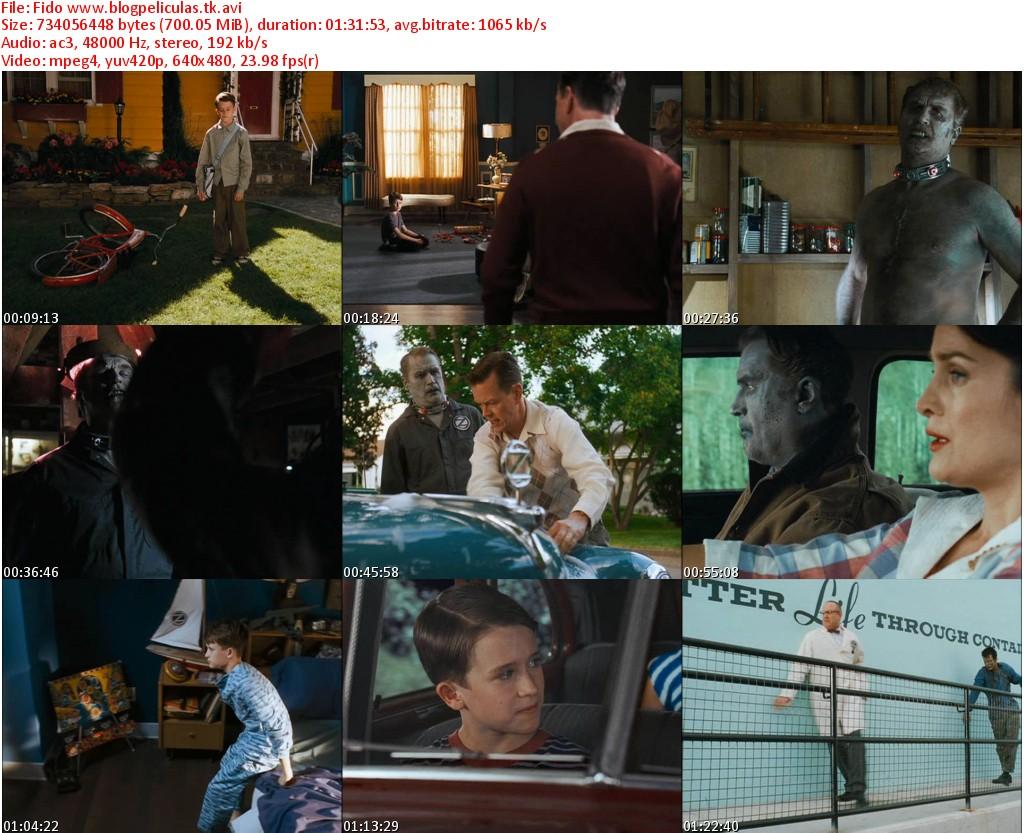 http://1.bp.blogspot.com/-_HgpXYluDlA/TccpaZ16OdI/AAAAAAAAAX4/_cFBvELBEsE/s1600/Fido+jpg.jpg