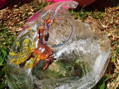 Globos de hielo en Recicla Inventa