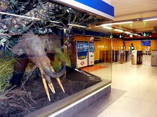 restos paleontológicos estación parada carpetana metro Madrid