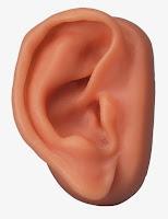 A orelha Direita de Malco