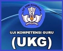 UKG, Program Peningkatan Kompetensi Guru Pemicu Kecemburuan