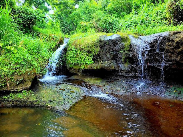 Brgy. San Vicente, Sto. Tomas, Batangas