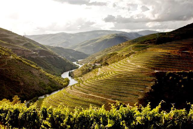 Divulgação: The Yeatman sugere viagem pelos melhores segredos do Porto e do Douro - reservarecomendada.blogspot.pt