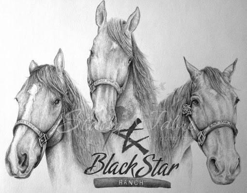 Black Star Ranch Drawing
