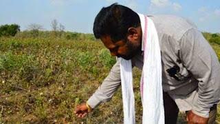 যে কারণে ভারতের কৃষকেরা আত্মহত্যা করে