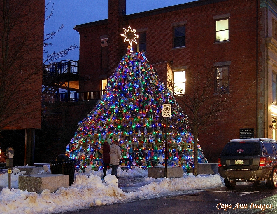 Cape Ann Images: Lobster Trap Christmas Tree 2015!
