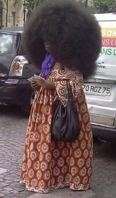 funny pictures black woman with hairstyle