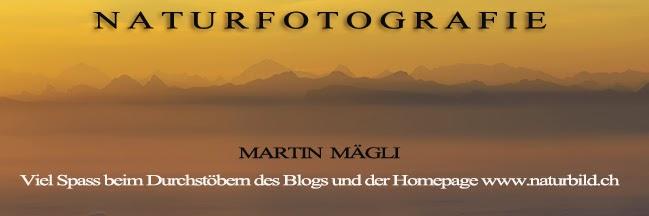 Blog von www.naturbild.ch