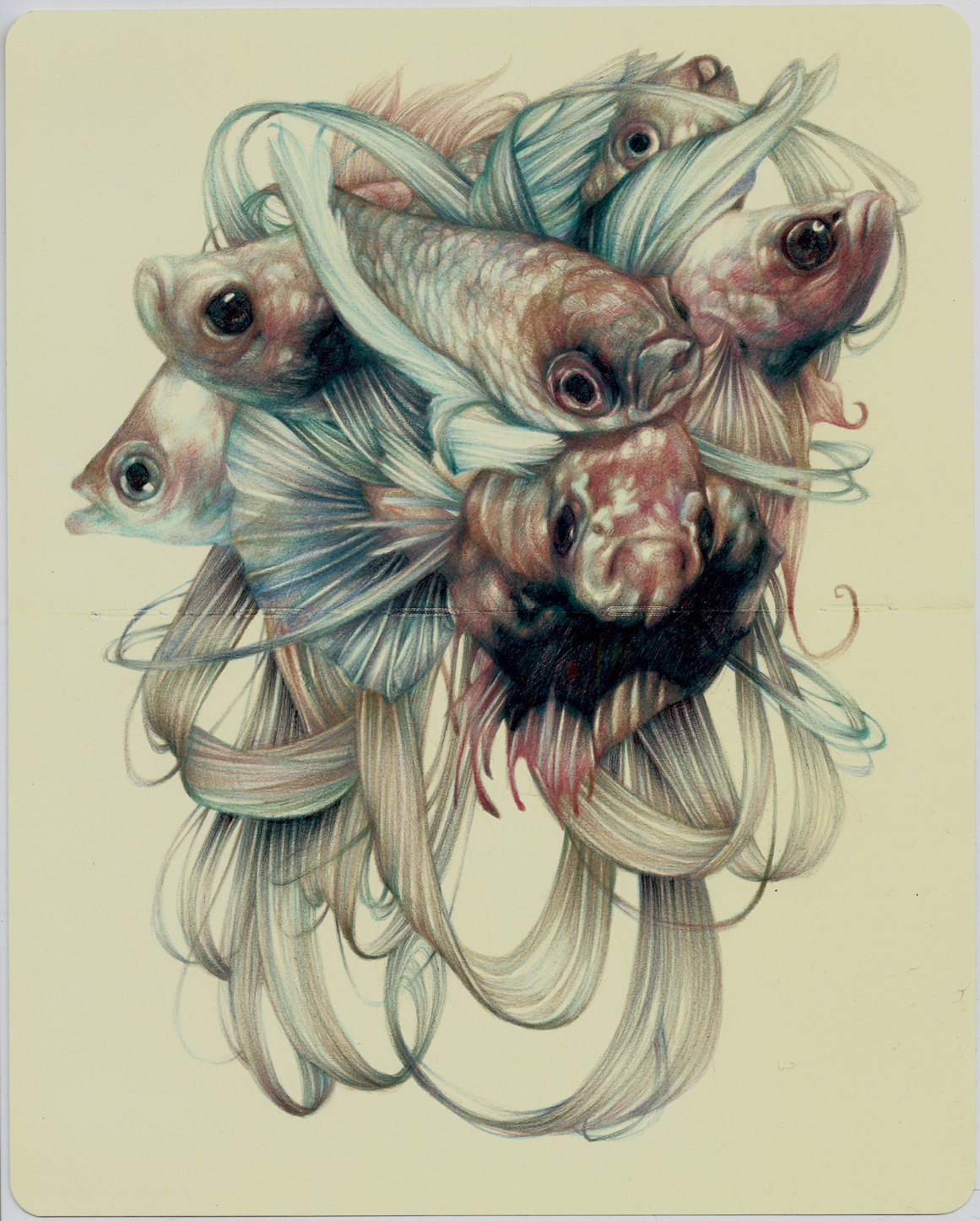 Marble Colored Pencil Drawings Of Clusters : Everything is art recommended artist marco mazzoni