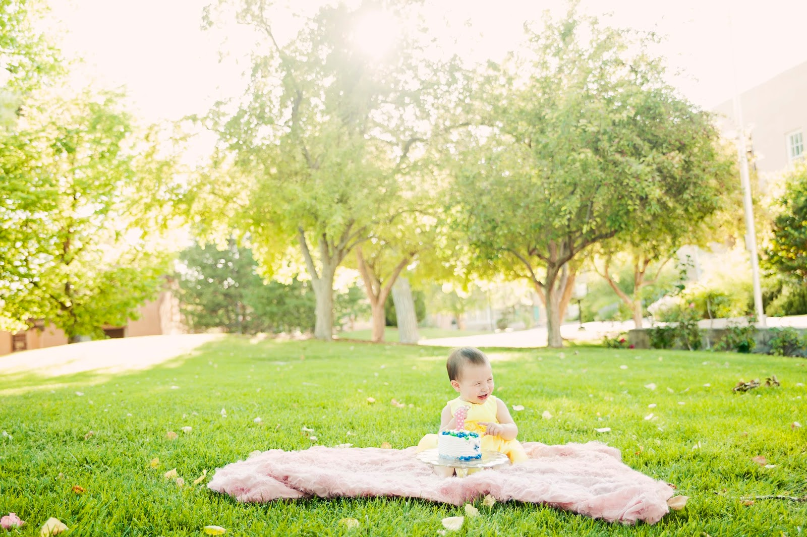 Family photography, albuquerque family photography, albuquerque family photos, family photography locations, UNM photoshoot, cake smash albuquerque, first birthday photos, cake smash photography, cake smash albuquerque