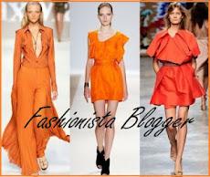 Fashionista Blogger