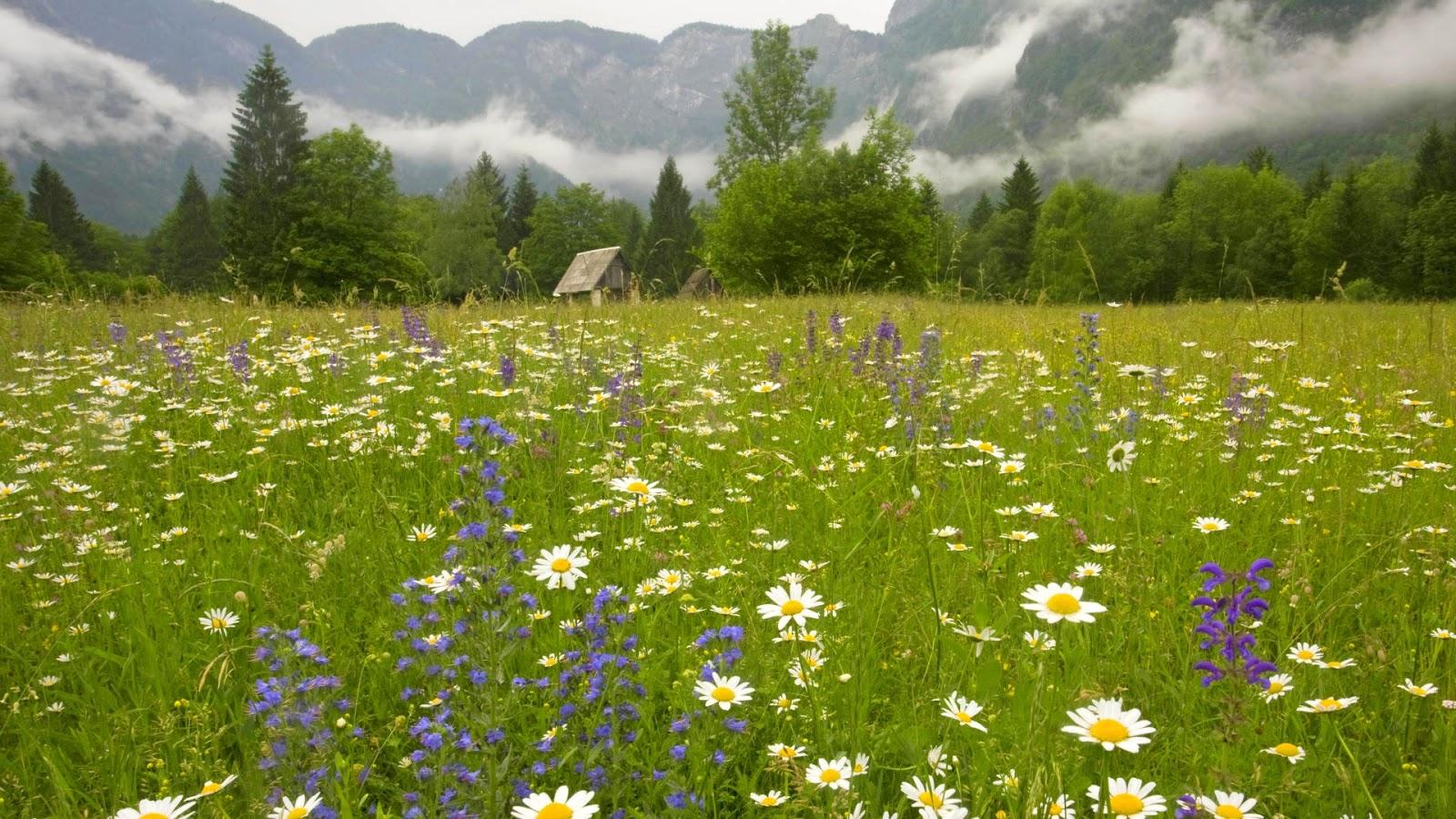 Beautiful Eastern Europe Julian Alps Slovenia