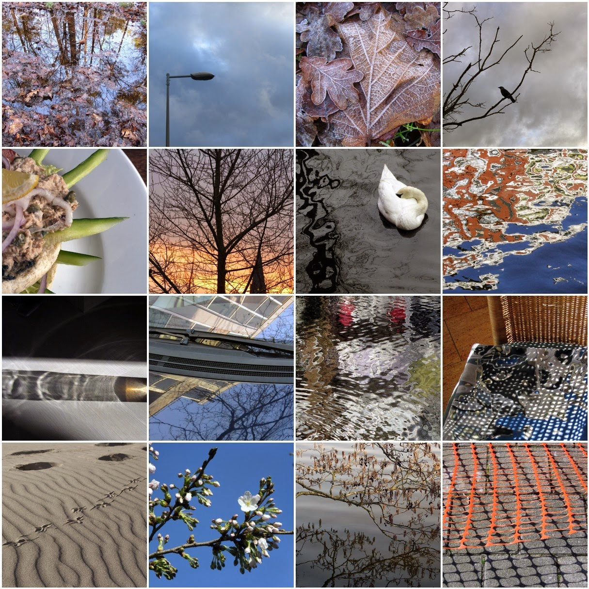 mosaic: Winter 2014