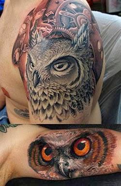 Tatuagem realista de coruja para homens