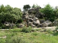 Les Roques de Sant Marc estan formades per grans blocs de gresos i lutites força compactes